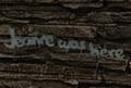 FoNV Jeanne was here