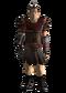 Legion Praetorian armor