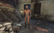 FO4 Paladin Danse in BOS uniform