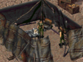 Fo1 Diana.png