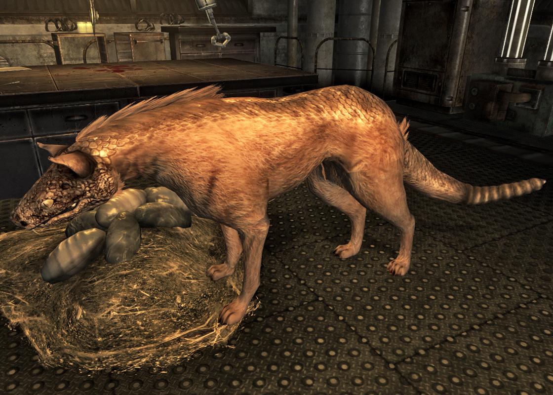 fallout new vegas roxie
