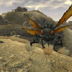 A cazador attacking