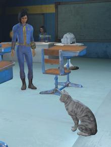 Gatito, gatito 2 -FO4- Nuquina