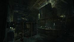 Pinkertons lab