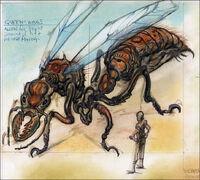 Giant ant CA1