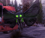 Glowing mothman