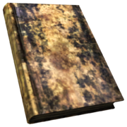 FNV BurnedBook08