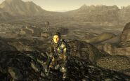 FNV BoSScout2