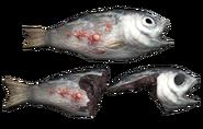 Fo4 fish