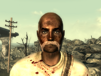 FO3Wasteland doctor8