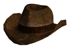 Ranger brown hat