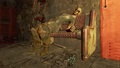 FO4NW Anise.png