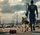 Нейт (Fallout 4)