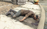 Fo4Mikail