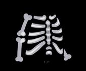 FoS skeleton costume
