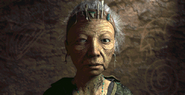FO02 NPC Elder N