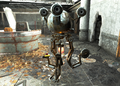Fo4 Molly.png