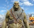 Fo4supermutantshoulderrags.png