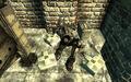 Fo3BS Enclave soldier log.jpg