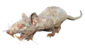 FO4NW Rad-rat