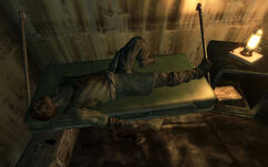 Fo3 wasteland recluse