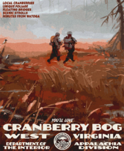 Cranberry Bog DOI poster