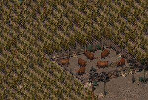 Fo2 Ghost Farm Agro