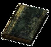 Large Burned Book