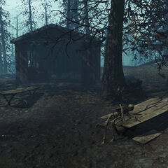 В таборі національного парку