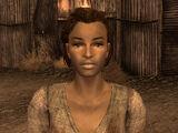 Stella (Fallout: New Vegas)