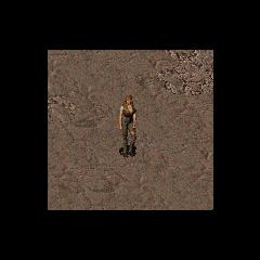 In-game Tandi in the original <i>Fallout</i>.