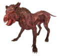 FO4 Mongrel dog.png