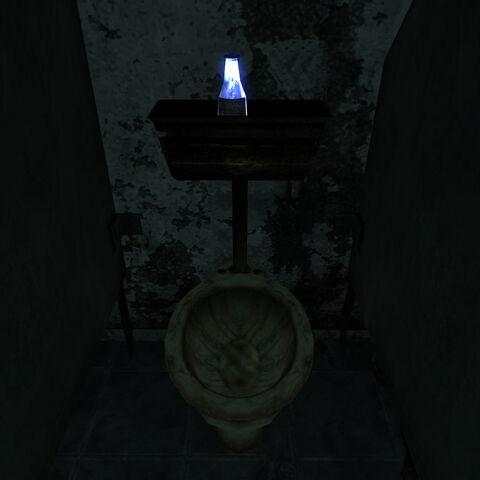 Знахідка в жіночому туалеті.