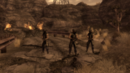FNV Great Khans support squad For the Republic p2