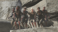 FO76 Feral ghoul variants