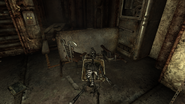 Fo3 Vault 106 (skeleton)