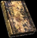 FNV BurnedBook04