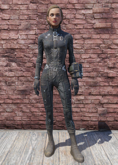 FO76 Brotherhood Officer Suit