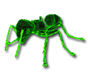 Fo2 Render Ant
