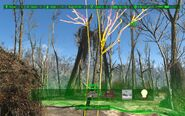 FO4 Bug Tree without textures (Sanctuary Hills)