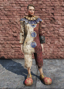 FO76 Clown Outfit Female