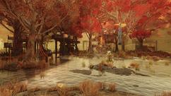 FO76 Treehouse village