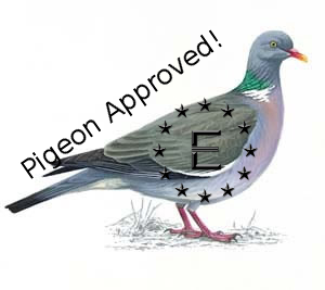 Pigeon approved!