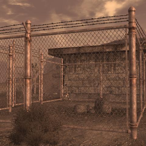 Баг з розгулює зовні загороди Семмі Уізерс