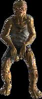Feral ghoul 02