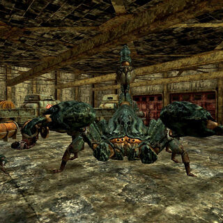 Radscorpion queen in <i>Fallout New Vegas</i>