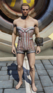 FO76 Swimsuit male