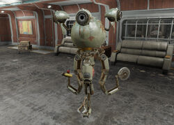 Fo4FH Maxwell