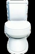 Fo4 clean toilet