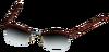 Tortiseshell Glasses